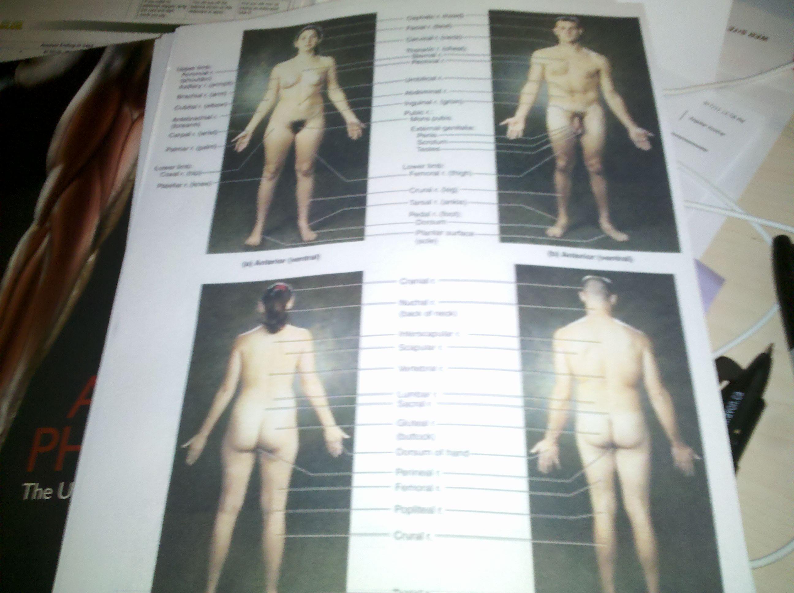 P90x nude women